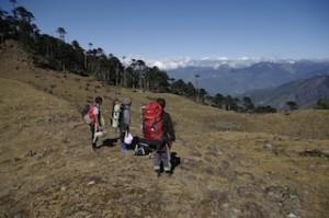 Bhutan- Arunachal area. Photo by Dr. Shinji MIYAMOTO