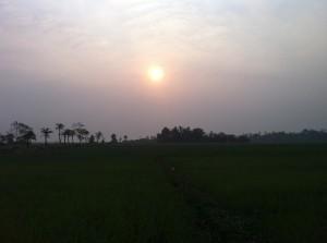Hatiya, Bangladesh 2013 Photo by Dr. Shinji MIYAMOTO